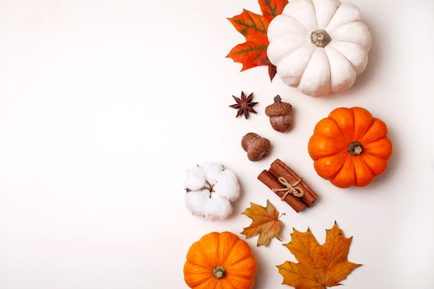 Małe ozdobne dynie i jesienne liście na białym stole. płaski styl świecenia