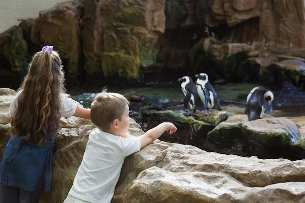 Małe rodzeństwo patrząc na pingwiny