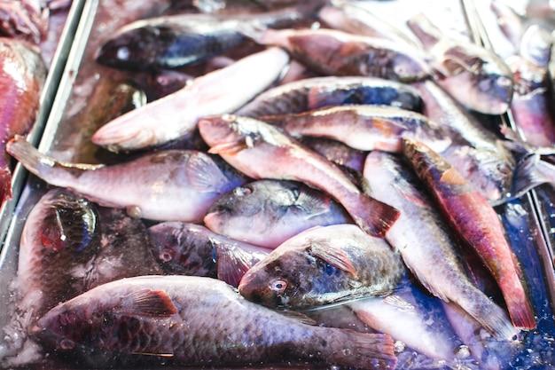 Małe ryby na targu rybnym