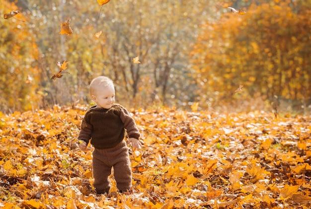 Małe szczęśliwe dziecko w jesień parku