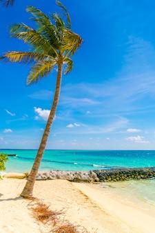 Malediwy wybrzeża malediwy podróże niebieskie malownicze