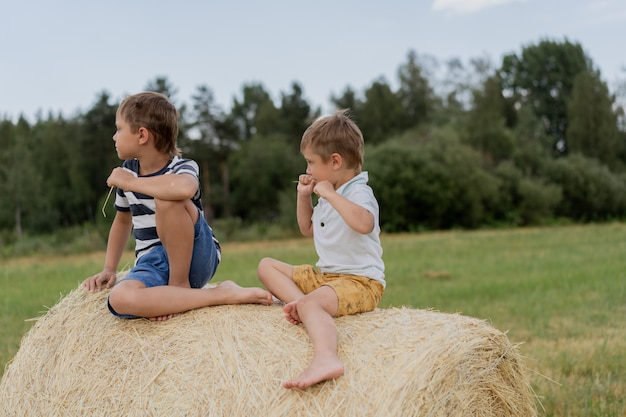 Mali śliczni chłopcy rasy kaukaskiej siedzą na siana na polu w okresie letnim ze słomą w ustach
