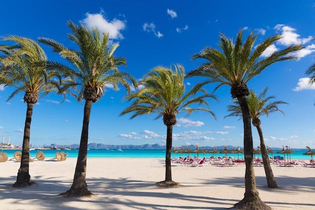 Mallorca platja de alcudia beach na majorce