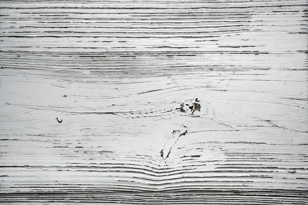 Malowana na biało struktura starego drzewa. pęknięty tle powierzchni drewnianych