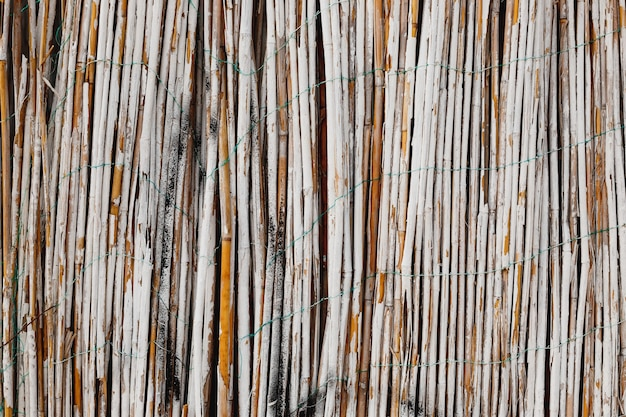 Malowany na biało bambusowy płot. zbliżenie: bambusowa tekstura. drewniane tło z naturalnych materiałów.