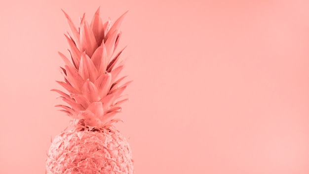 Malowany różowy ananas na kolorowym tle