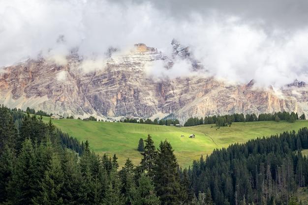Malownicza alpejska łąka u podnóża dolomitów pokryta chmurami. trentino, alto adige, włochy