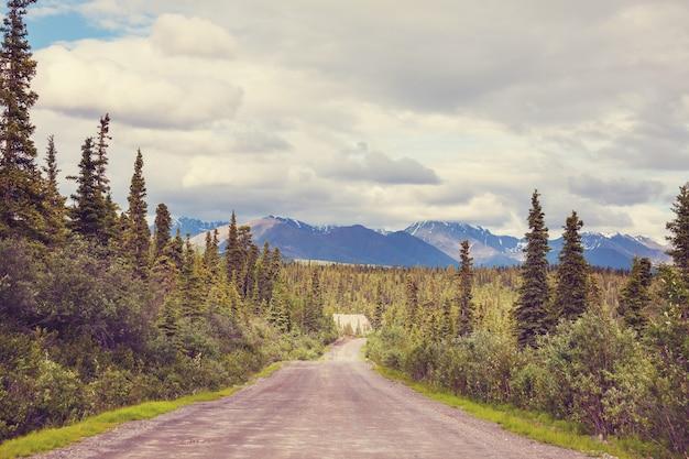 Malownicza Autostrada Na Alasce, Usa Premium Zdjęcia
