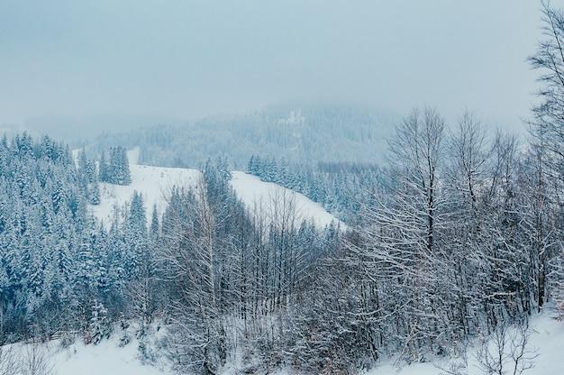Malownicza i spokojna zimowa scena europejski kurort lokalizacja piękny zimowy krajobraz górski