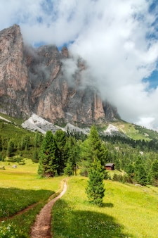 Malownicza ścieżka na wysokogórskiej łące z mglistymi szczytami włoskich dolomitów.