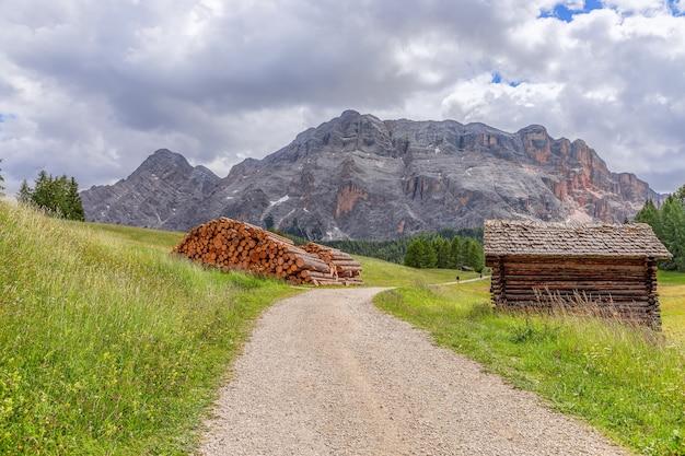 Malownicza ścieżka przez alpejską łąkę we włoskich dolomitach do uprawiania turystyki pieszej i rowerowej.