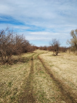 Malownicza wiejska droga we wsi.