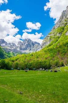 Malownicza zielona łąka na tle skał o wysokich szczytach.