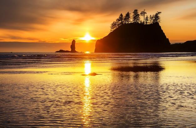 Malownicze i surowe wybrzeże pacyfiku w olympic national park w stanie waszyngton, usa. skały w oceanie i duże kłody na plaży.