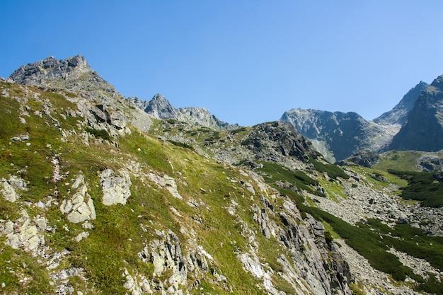 Malownicze krajobrazy gór i zielonego lasu. wysokie skały. piękny krajobraz.