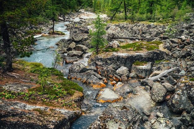 Malownicze tło turkusowej czystej wody strumienia wśród skał z mchami, porostami i dziką roślinnością. klimatyczny krajobraz górski z przezroczystym górskim potoku. piękny górski potok.