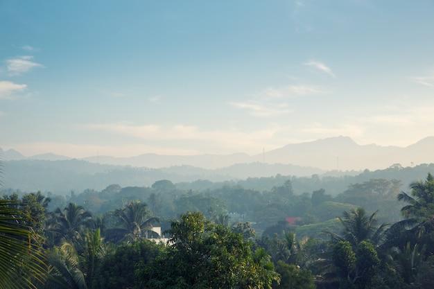 Malownicze zielone góry i dżungle, cejlon