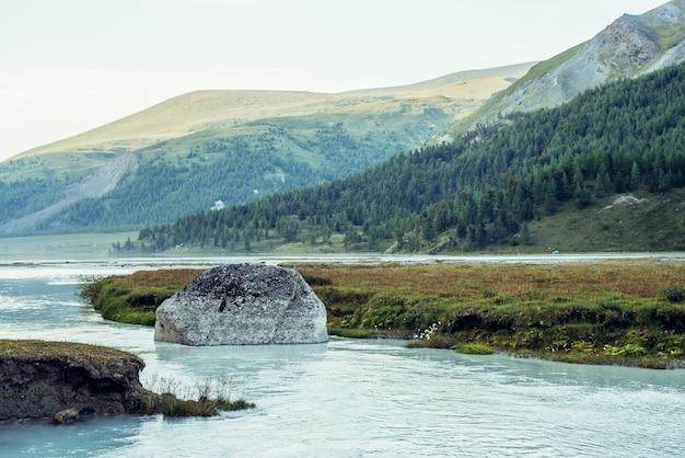 Malowniczy alpejski krajobraz z dużym omszałym kamieniem w czystej lazurowej wodzie górskiej rzeki. klimatyczna górska sceneria z mleczną rzeką z błękitną wodą. duży kamień w górskiej rzece i trawach na brzegu.