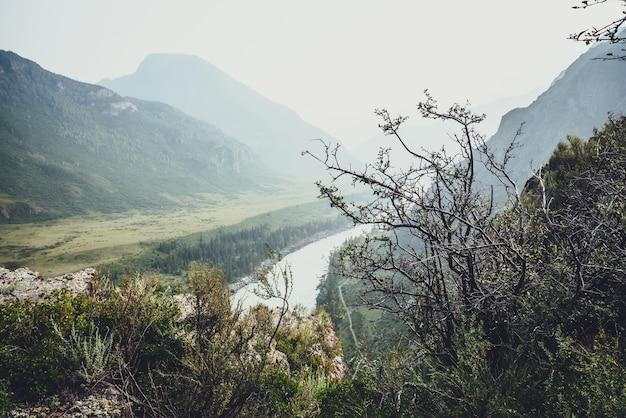 Malowniczy alpejski krajobraz z pięknymi zaroślami i dziką roślinnością na skałach na tle górskiej rzeki i sylwetki gór w rozmyciu. klimatyczna górska sceneria z dziką roślinnością na klifie.