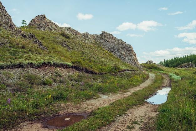 Malowniczy alpejski krajobraz z polną drogą wzdłuż skał w górach. kałuża na drodze w pobliżu skał i bujnej roślinności w górach. piękna górska sceneria z polną drogą z kałużą wśród górskiej flory.
