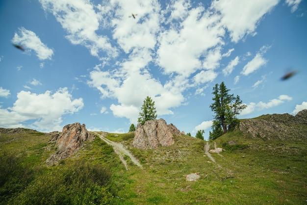 Malowniczy alpejski krajobraz ze skrzyżowaniem dwóch dróg gruntowych na wzgórzu przez skały pod błękitnym niebem z chmurami. szczęśliwy strzał górskiego skrzyżowania z owadami. piękna sceneria z dwiema drogami gruntowymi i skałami.