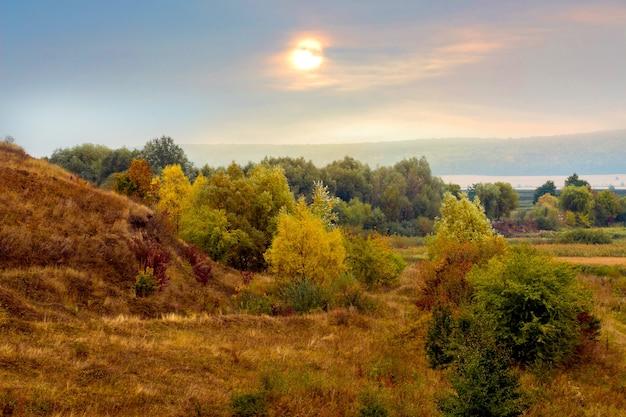 Malowniczy jesienny krajobraz z drzewami w lesie w pobliżu skał