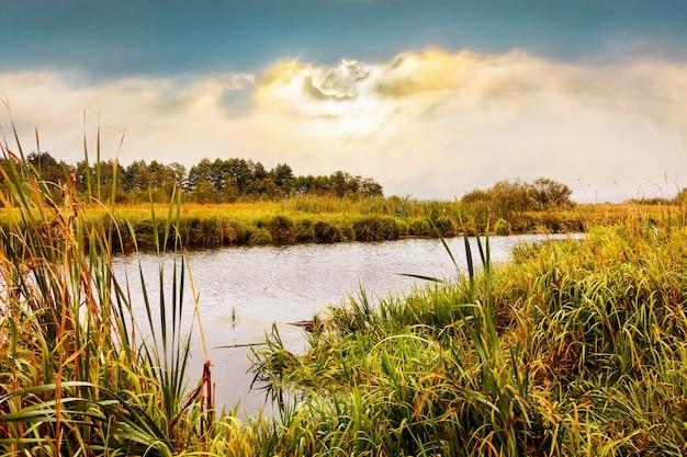 Malowniczy jesienny krajobraz z rzeką i roślinnością na brzegach podczas zachodu słońca