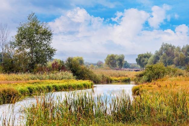 Malowniczy jesienny krajobraz z rzeką wśród zarośli drzew i trzcin oraz błękitnym niebem z białymi chmurami