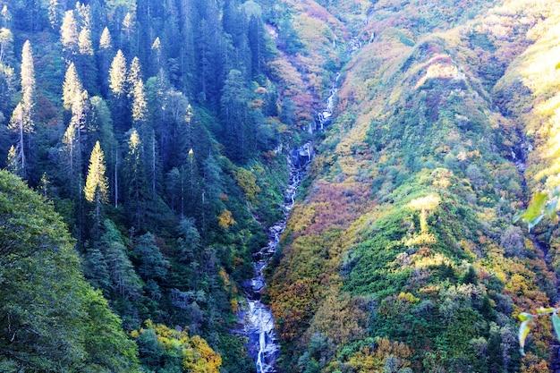 Malowniczy jesienny wodospad