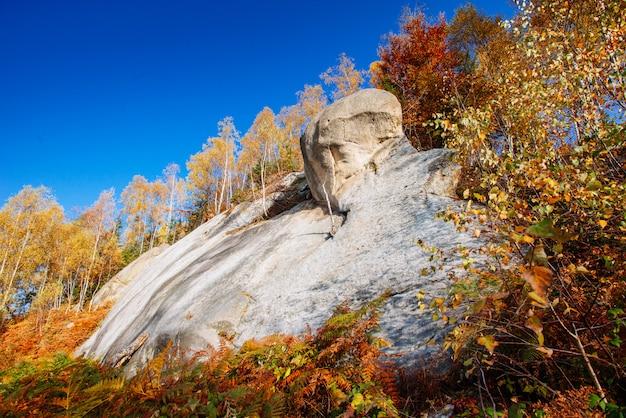 Malowniczy krajobraz jesienny