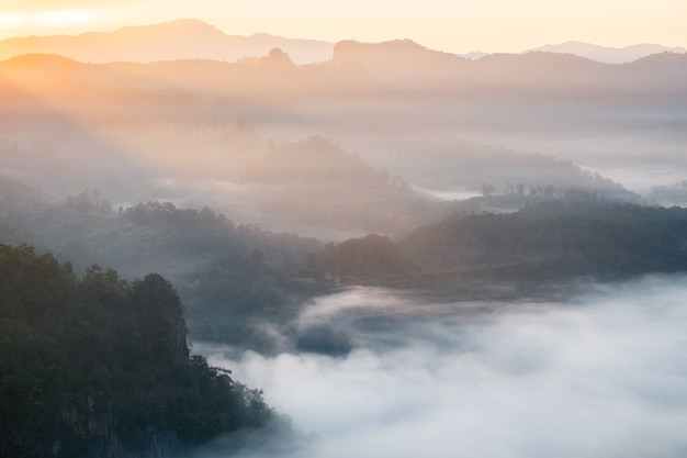 Malowniczy krajobraz na mglistym wzgórzu o wschodzie słońca, baan jabo, mae hong son, tajlandia