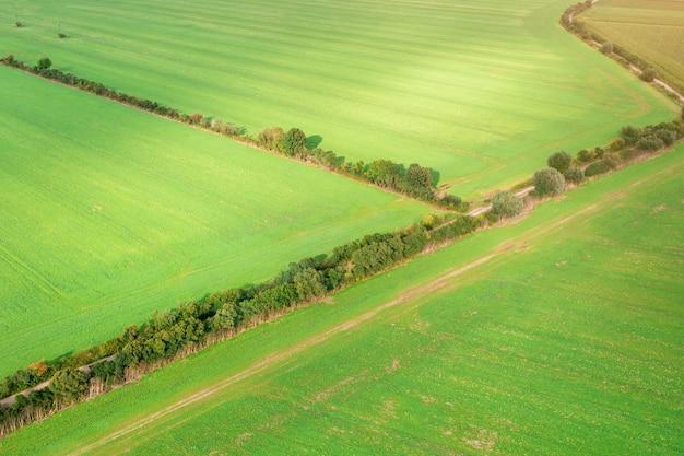 Malowniczy krajobraz na zielonych polach oświetlonych słońcem niekończące się przestrzenie, wiejski krajobraz