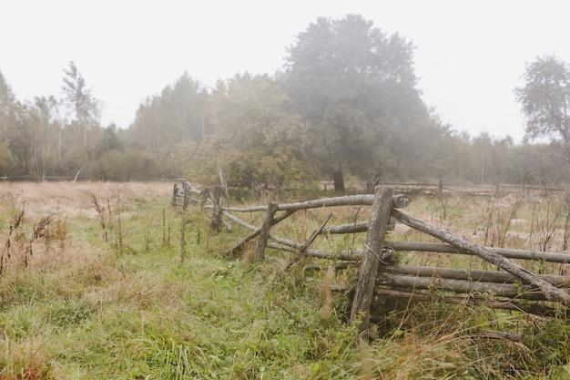 Malowniczy obraz malowniczej wiejskiej przyrody na wsi
