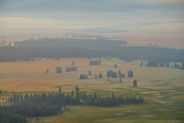 Malowniczy słoneczny krajobraz płaskowyżu z zielonym lasem i rzeką w świetle słonecznym i lekką mgłą. górska sceneria płaskowyżu z drzewami iglastymi nasłonecznionymi żółtym światłem zachodzącego słońca. minimalny widok na zielony płaskowyż