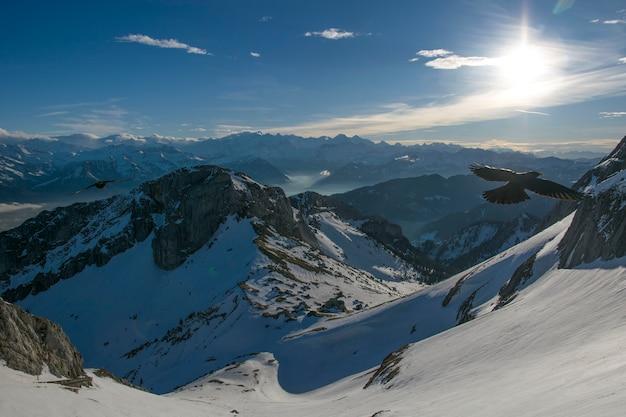 Malowniczy widok na alpy pokryte śniegiem