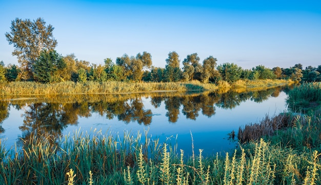 Malowniczy widok na duże, ciche jezioro ze spokojną, chłodną wodą w ciepły letni dzień