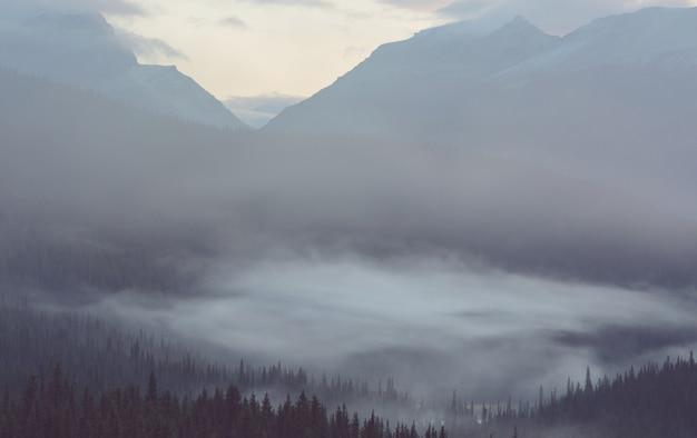 Malowniczy widok na góry w kanadyjskich górach skalistych w sezonie letnim