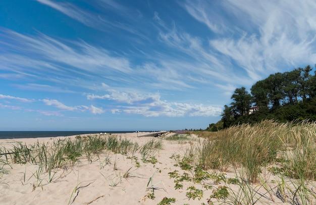Malowniczy widok na plażę od strony morza bałtyckiego w lecie
