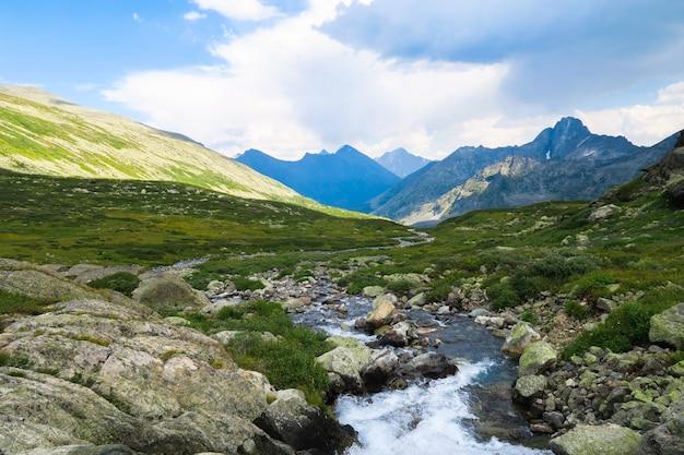 Malowniczy widok na płynący strumień górski