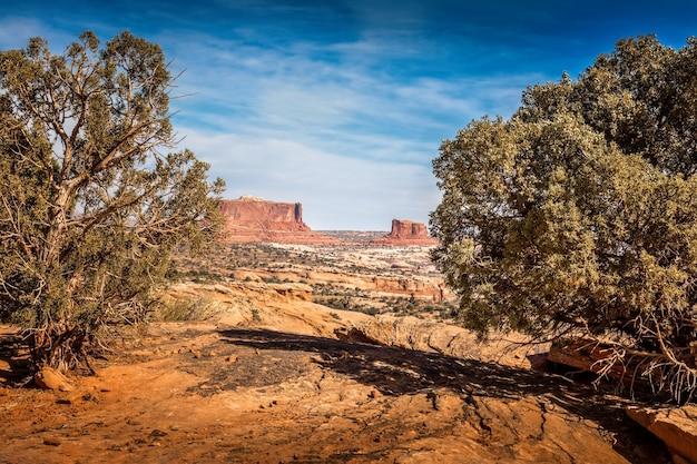 Malowniczy widok na skały navajo w stanie utah, usa