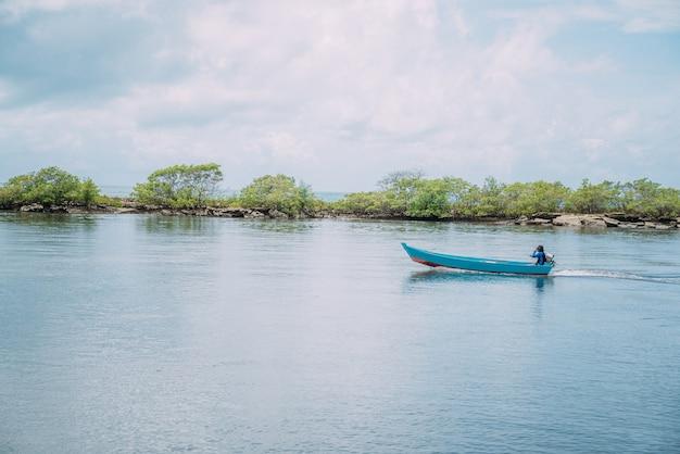 Malowniczy widok na spokojny krajobraz bagien namorzynowych na wybrzeżu bahia w brazylii