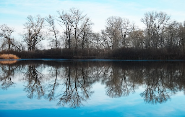 Malowniczy widok z odbiciem na jezioro. spokojny staw wcześnie rano