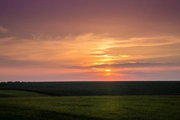 Malowniczy zachód słońca na równinie. ciemne niebo podczas zachodu słońca