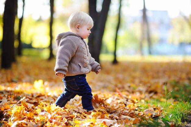 Maluch spaceru w parku na jesieni. mały chłopiec cieszyć się słoneczny dzień