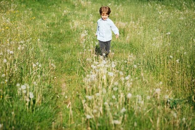 Mały chłopiec 3 lata bawiący się na łące kwiatowej, wesoła aktywność, bieganie i wolność, zdjęcie stockowe