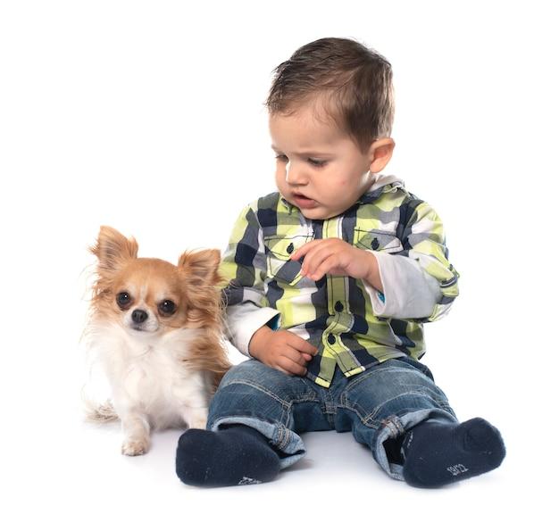 Mały chłopiec i chihuahua