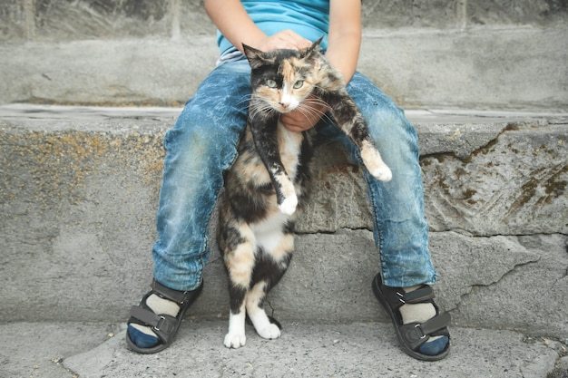 Mały chłopiec i kot w plenerze.