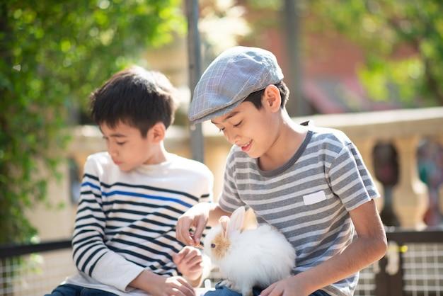 Mały chłopiec karmi królika