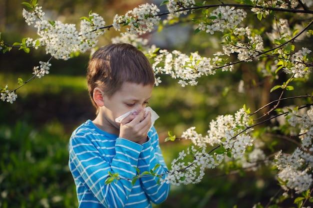 Mały chłopiec kicha z powodu alergii na pyłki.