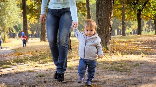 Mały chłopiec maluch trzymając rękę matki i spaceru w jesiennym parku lub lesie.